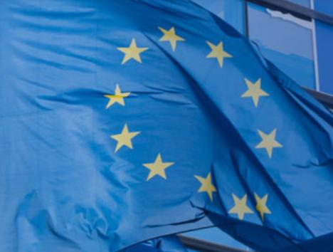 Le Parlement européen rejette la proposition de la Commission européenne relative aux critères d'identification des perturbateurs endocriniens.